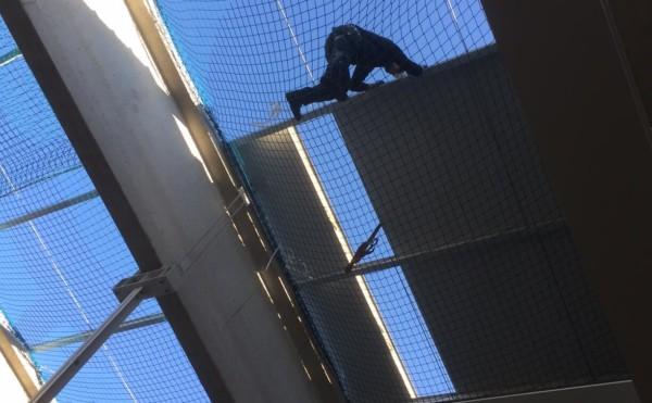 Personenauffangnetze in Mannheim